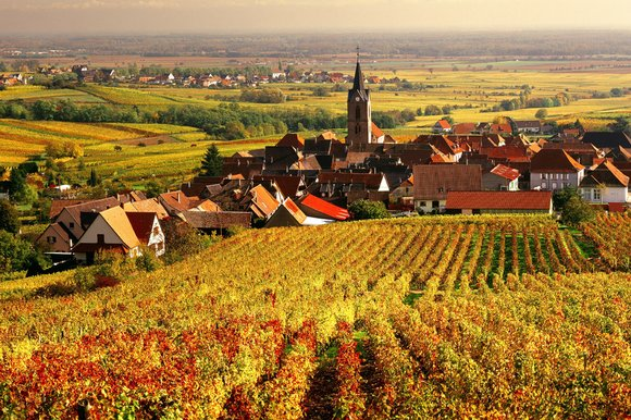 Haut Rhin, France Courtesy: http://www.thesundaytimes.co.uk/